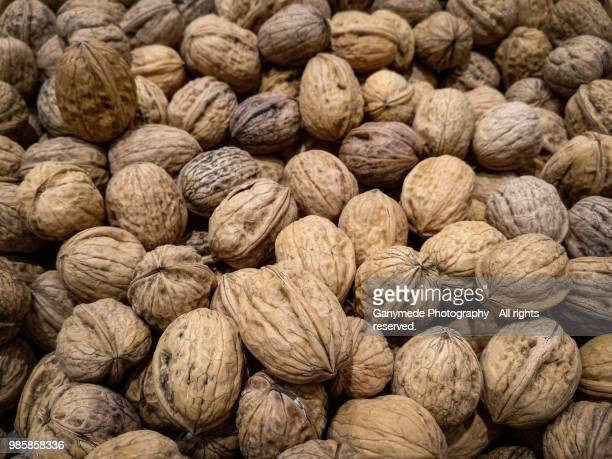 walnuts - nutshell stock photos and pictures