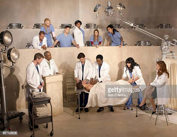 S ANATOMY Walt Disney Television via Getty Images Television Network's Grey's Anatomy stars Justin Chambers as Alex Karev Katherine Heigl as Isobel...