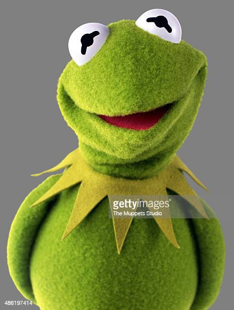 THE MUPPETS Walt Disney Television via Getty Images's The Muppets stars Kermit the Frog