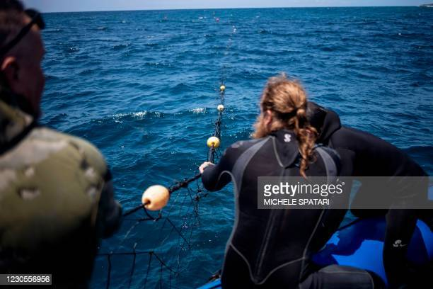 Walter Bernardis pulls a shark net out of the Indian Ocean in Umkomaas near Durban, South Africa, on December 10, 2020. - Aliwal Shoal, a fossilised...