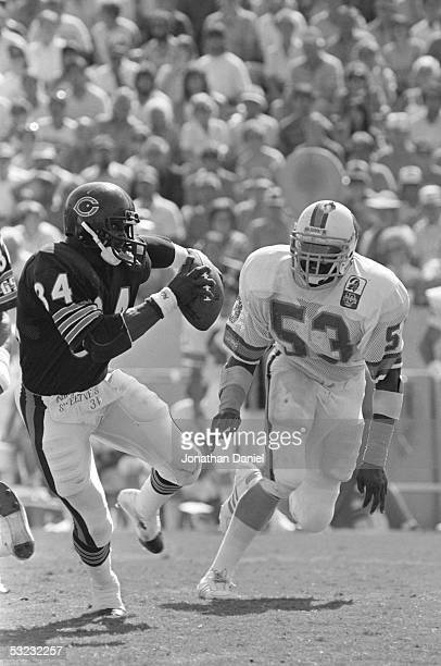 Walter Payton of the Chicago Bears heads upfield pursued by Hugh Green of the Tampa Bay Buccaneers during the game at Tampa Stadium on October 6,...