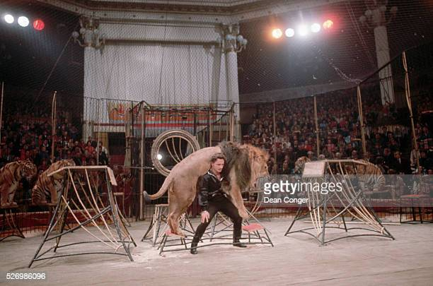 Walter Zapashny Lifting Lion at a Moscow Circus