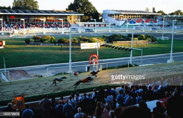Walthamstow Greyhound Stadium.