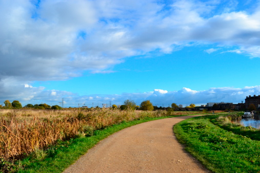 Walthamstow Marsh, Greater London 158193614
