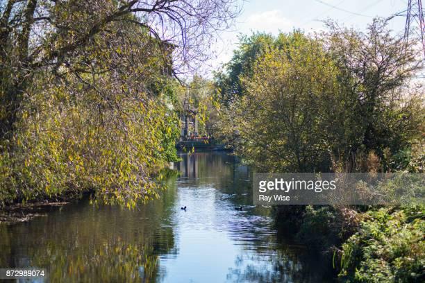 Walthamstow Wetlands nature reserve