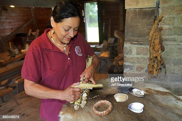 Wampanoag Native American woman demonstrating animal jaw on some corn at Aptucxet Trading Post Museum