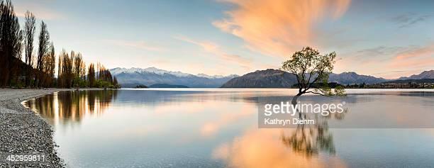 wanaka - lone tree sunrise at lake wanaka - lago wanaka - fotografias e filmes do acervo