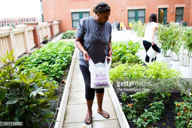 Wanda Peaches Dickerson a resident of Potomac Yard Apartments looks over her rooftop garden Dickerson is developing her own line of relish that she...