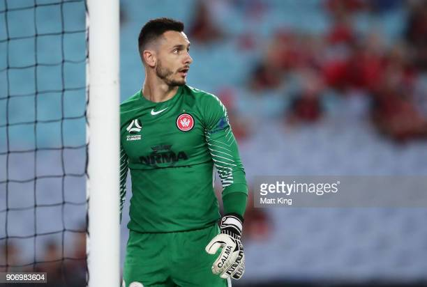Wanderers goalkeeper Vedran Janjetovic looks on during the round 17 ALeague match between the Western Sydney Wanderers and the Melbourne Victory at...