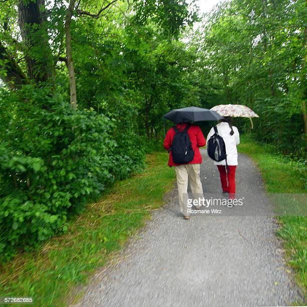 Wandering in the rain