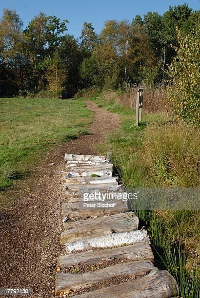 Wanderweg im Naturschutzgebiet Huvenhoopsmoor, Landkreis Rotenburg / Wümme, Niedersachsen, Deutschland, Europa, Moor, Natur, Reise,