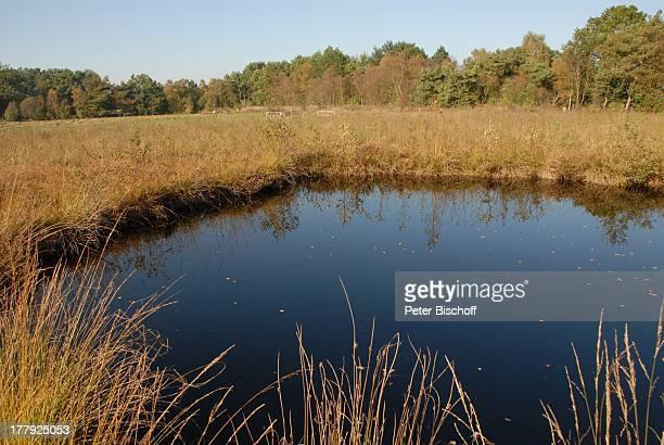 Wanderweg im Naturschutzgebiet Huvenhoopsmoor, Landkreis Rotenburg / Wümme, Niedersachsen, Deutschland, Europa, Moor, Moorsee, Natur, Reise,
