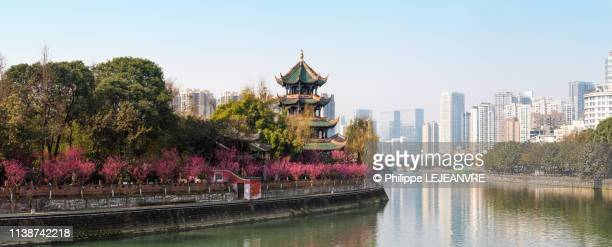 wangjianglou pagoda with trees in bloom in chengdu - 成都 ストックフォトと画像