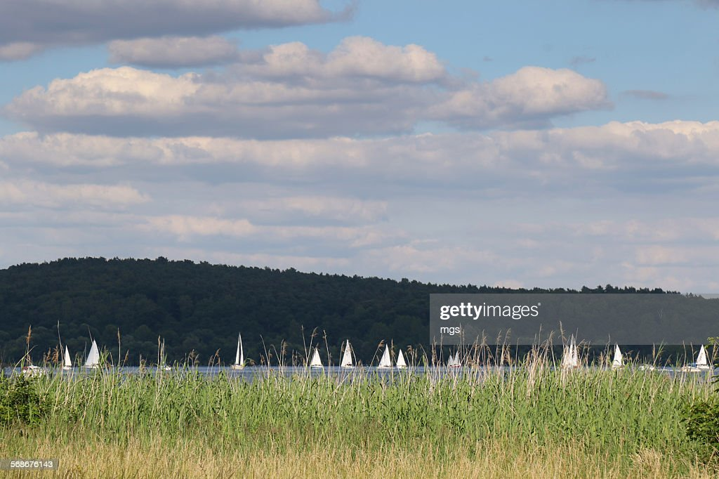 Wannsee : Stock Photo