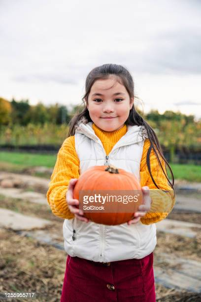i want this pumpkin! - human limb stock pictures, royalty-free photos & images