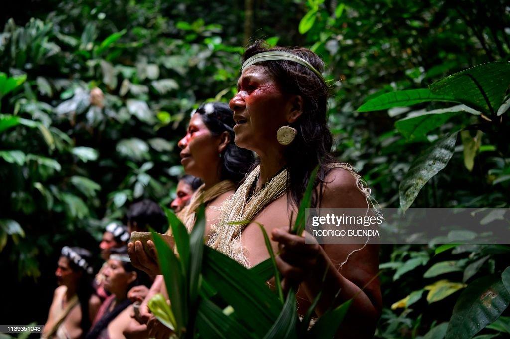 ECUADOR-INDIGENOUS-WAORANI : News Photo