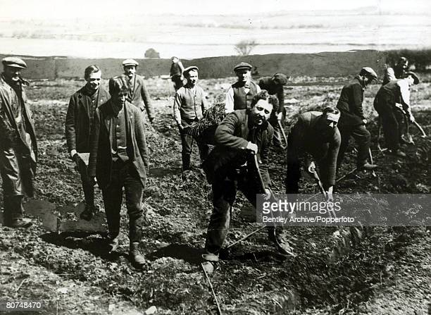 War and Conflict World War I Great Britain The Dartmoor 'conscientious objectors' cultivating the soil although it was said that they spent much of...