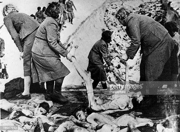 1945 Captured German SS women forced to unload dead bodies to be buried in a mass graves the victims of the horrors of the Bergen Belsen...