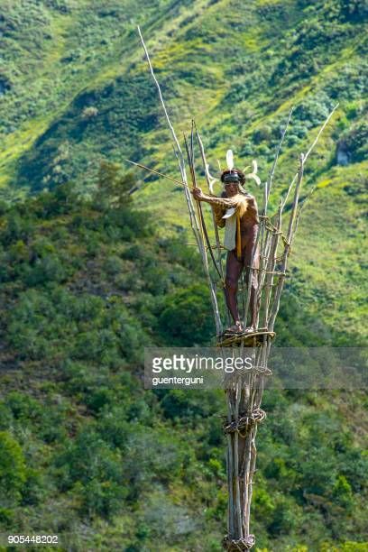 war chief of the dani tribe on a watchtower, west-papua - penile sheath stock photos and pictures