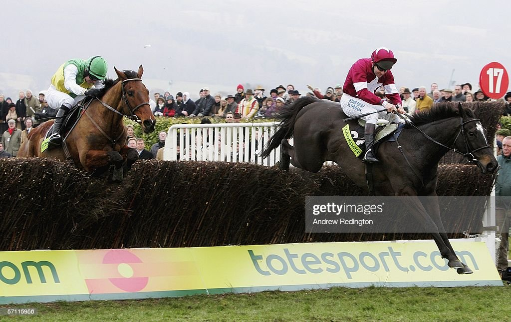 Cheltenham Festival : News Photo