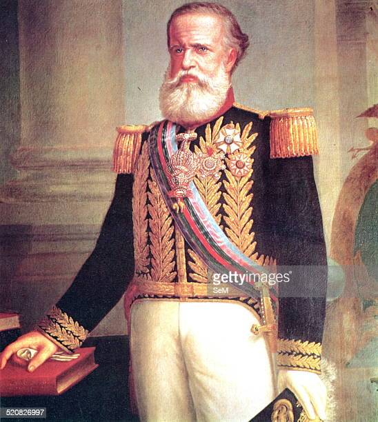 War of the Triple Alliance in the Paraguayan War 18651870 24 The Emperor Pedro II of Brazil