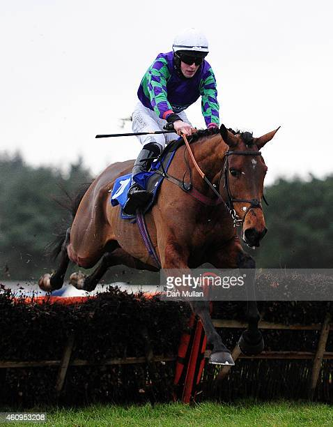 War Sound ridden by Ciaran Gethings clear the last to win The Royal Castle Hotel 'National Hunt' Novices' Hurdle Race at Exeter Racecourse on January...