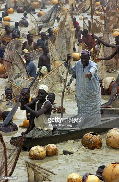 A warden watches from a boat as 30000 men search for the largest fish at the Argungu Fishing Festival on March 20 in Argungu Nigeria The Argungu...