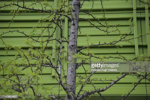 Warehouse Cladding & Nature