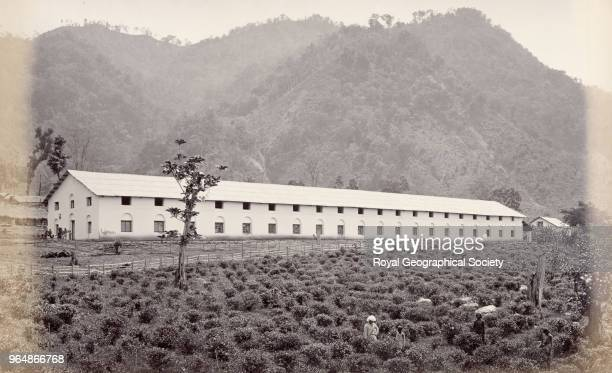 A warehouse on a tea plantation in Darjeeling West Bengal India 1860