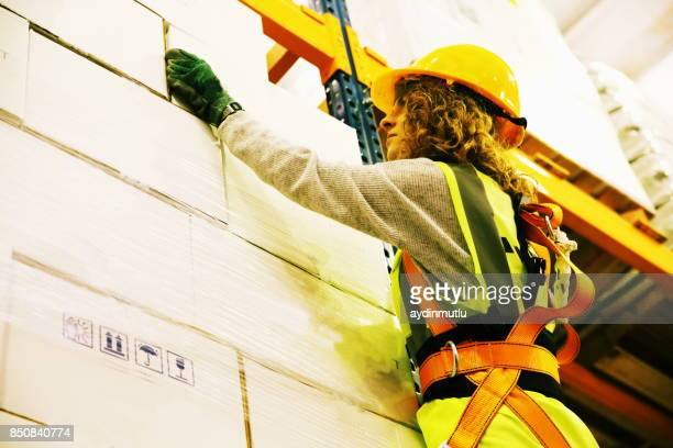 warehouse worker - safety harness stock photos and pictures