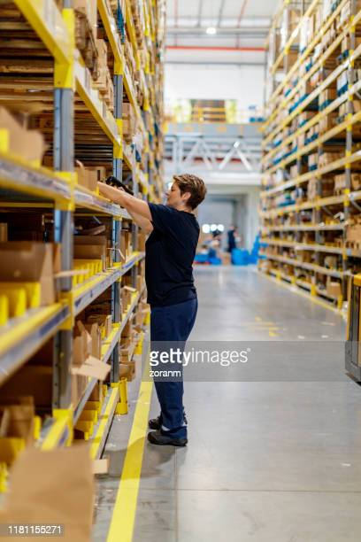 warehouse worker stacking shelf - positioning stock pictures, royalty-free photos & images