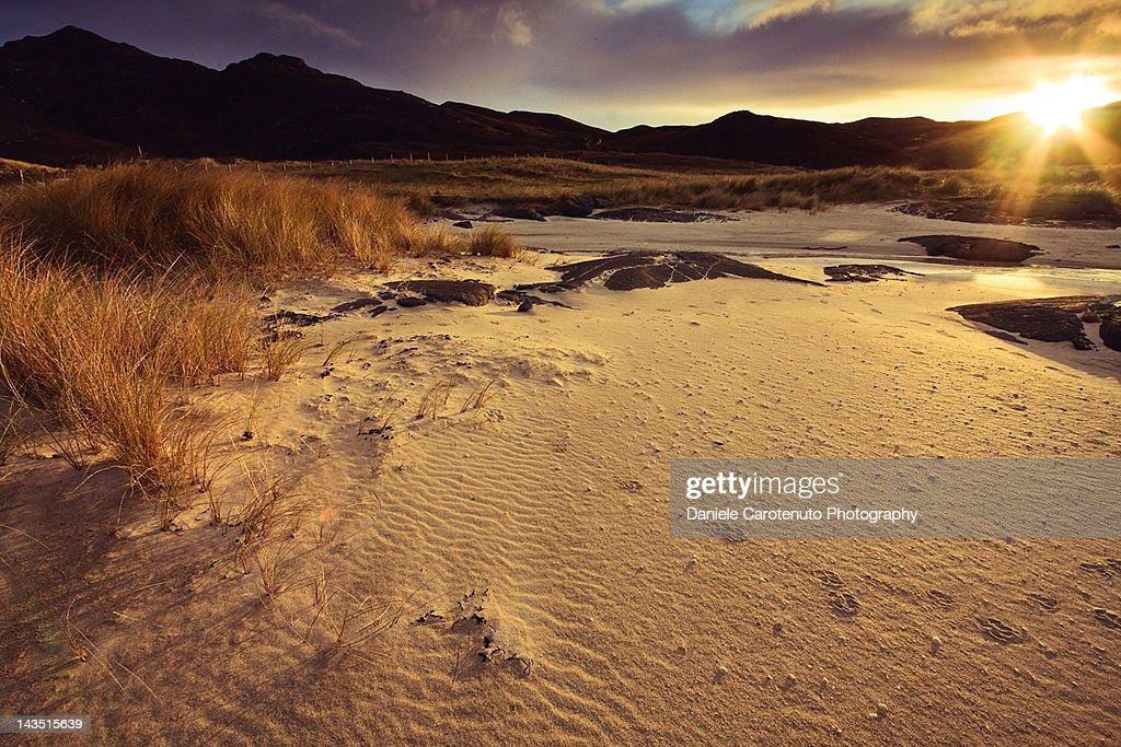 Warm dune at sunset : Stock Photo