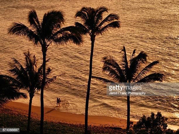Warm Maui Sunset on the Beach