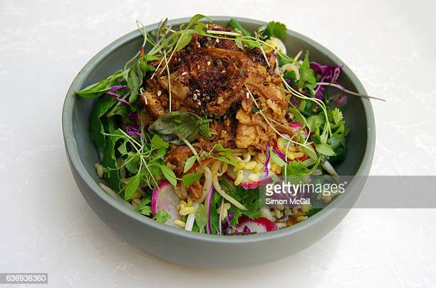 Warm sticky organic free range pork belly salad with red radish, red cabbage, bean sprouts, Asian herbs, brown rice, Nam Jhim dressing  & pink grapefruit
