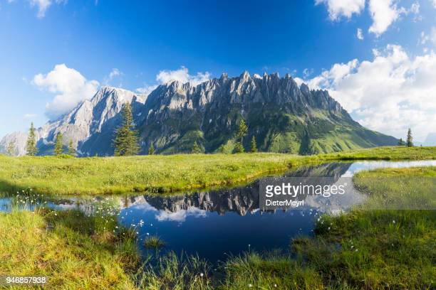 warm summer day at mount hochkönig, european alps - xxl panorama - salzburger land stock pictures, royalty-free photos & images