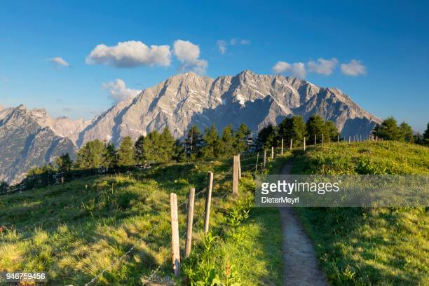 warm summer morning at mount watzmann, nationalpark berchtesgaden - berchtesgaden national park stock photos and pictures
