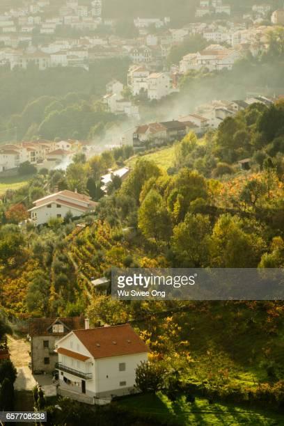 Warm Sunlit Village