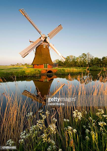 CONTENT] Warm sunset light shining on a historical windmill the Krimstermolen The windmill is being reflected in the water of a canal Grass and...