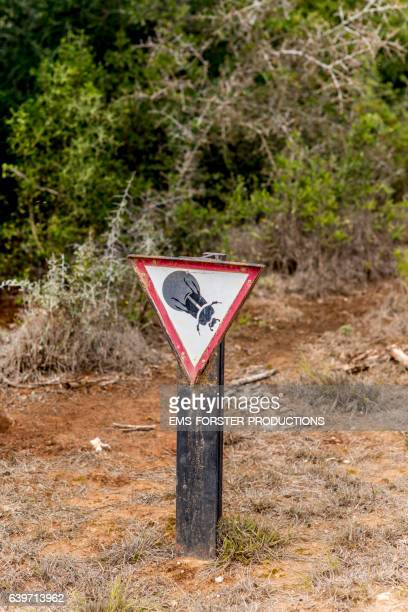 warning sign for flightless dung beetle in addo elephant national park - ems forster productions stock pictures, royalty-free photos & images