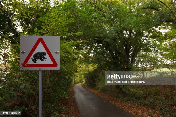 warning sign for frog and toads - frog stock pictures, royalty-free photos & images