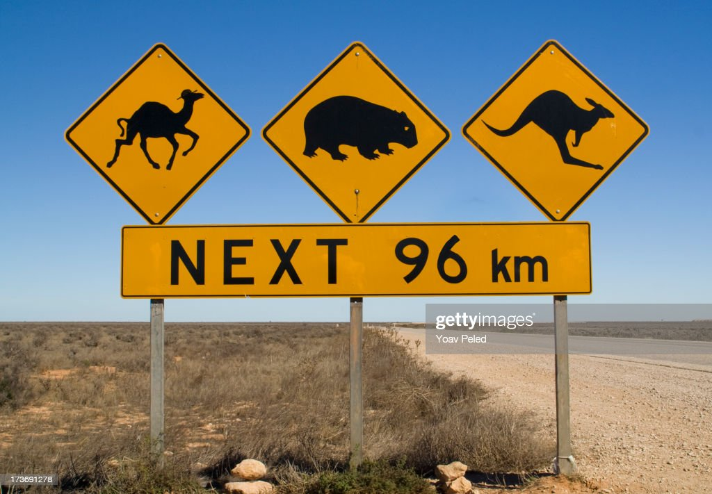 Warning sign on Number 1 road of Australia : Stock Photo