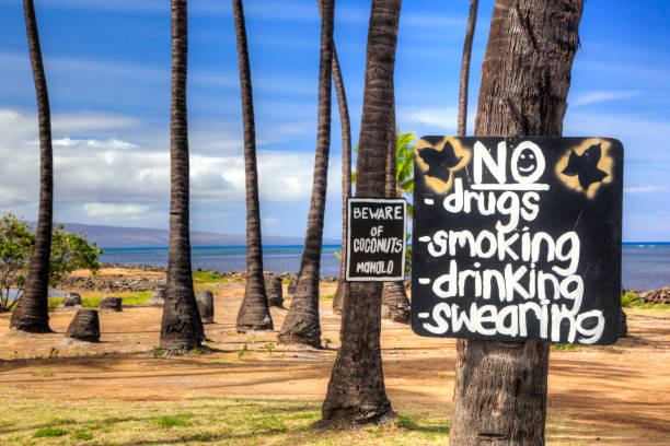 Warning signs under coconut palm trees