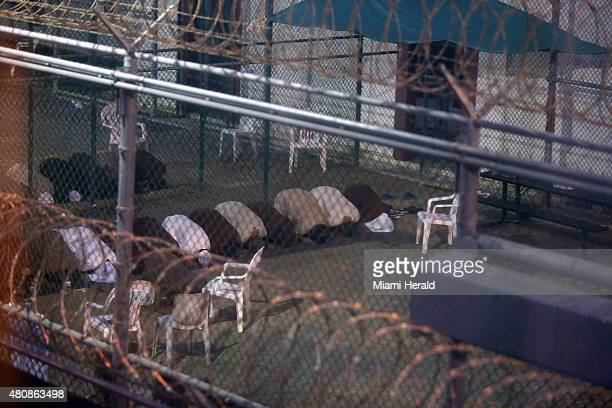 Waronterror captives from two different cellblocks separated by a fence conduct communal evening prayers at the Camp 6 prison building for...