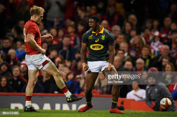 Warrick Gelant of South Africa celebrates scoring his sides first try during the international match match between Wales and South Africa at...