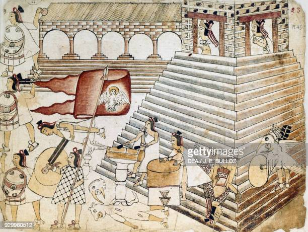 Warriors defending the Great Temple of Tenochtitlan the last Aztec stronghold Mexico illustration from Codex Azcatitlan Aztec Civilisation 16th...