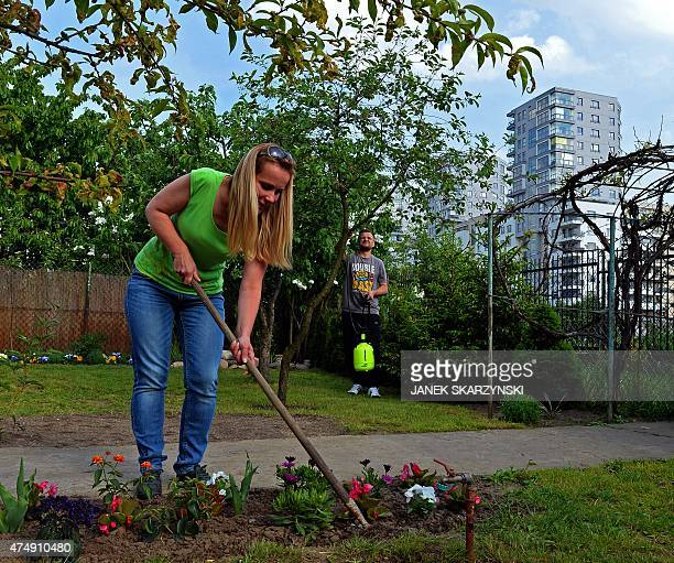 Warsaw residents work in a garden allotment in the center of the Polish capital on May 18 2015 A legacy of the Communist era the gardens give...