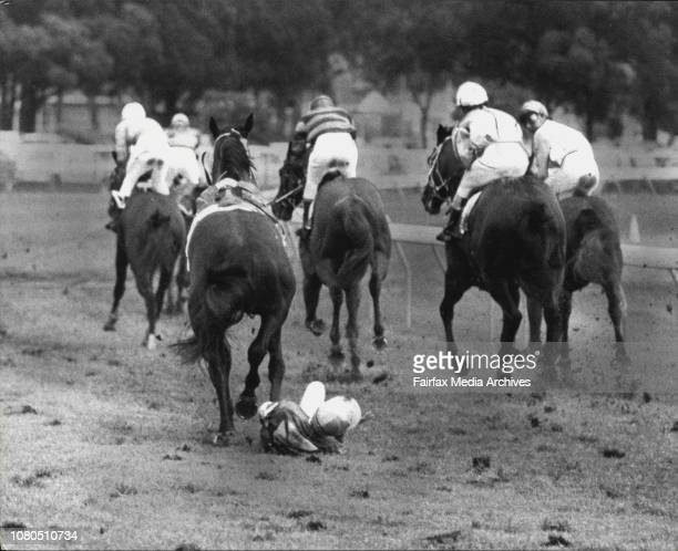 Warwick Farm Races Race Four 2nd Negus StakesJockey A Marney on the ground when Durano fell after passing the postOctober 15 1983