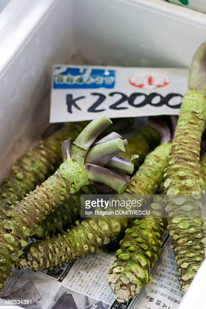 Wasabi root in Japanese market
