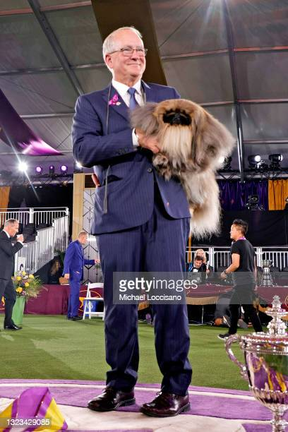 Wasabi the Pekingese, with handler/owner David Fitzpatrick, is seen in the winners circle after winning Best in Show at the 145th Annual Westminster...