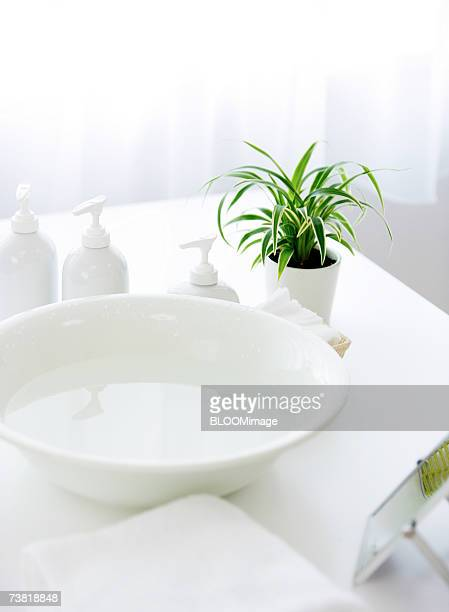 washbowl and plant on table - wash bowl stock pictures, royalty-free photos & images